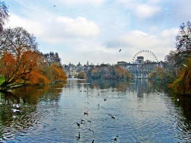 Hide Park & La noria -Londres