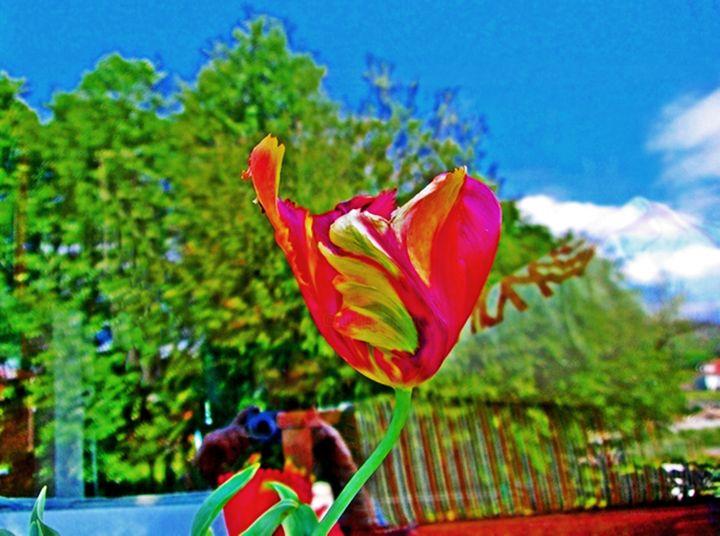 Arturo Carrión - Roja flor